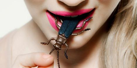 photos_courtesy_of_entomophagy_gillian_waddell